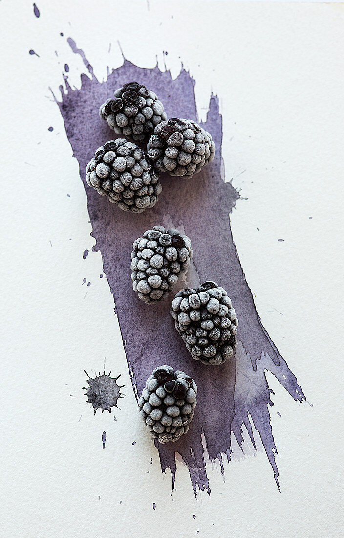 Frozen blackberries scattered over a watercoloured painted background