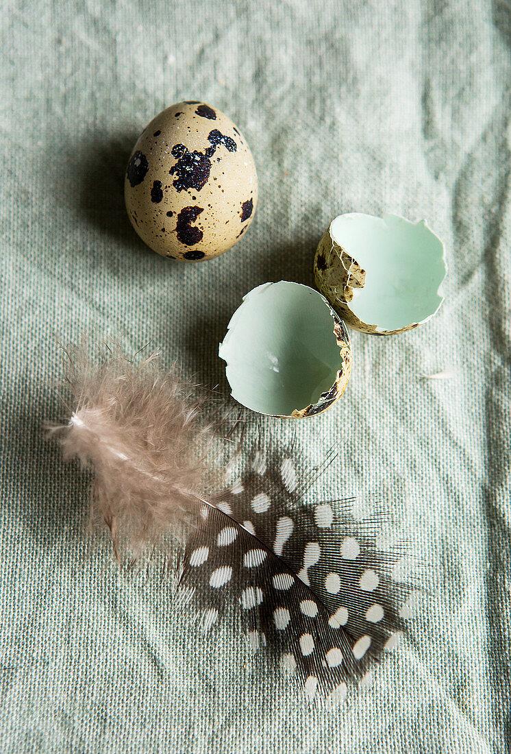 Quail egg, broken shell and feather on duck-egg green linen