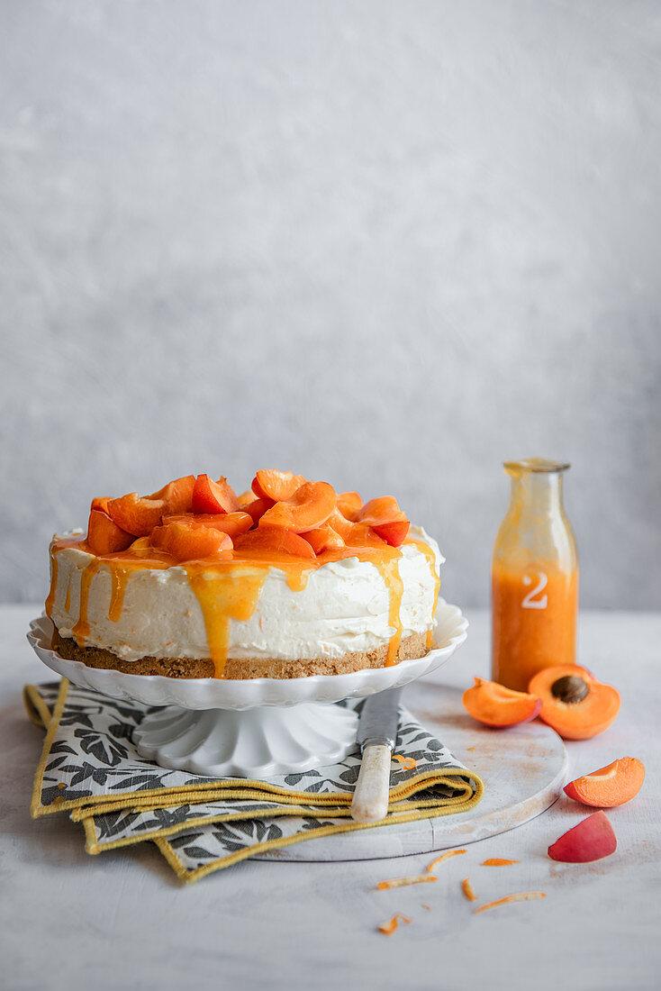 Orangen-Aprikosen-Cheesecake mit frischen Aprikosen und Sauce