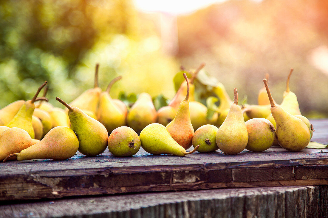 Ripe pears on a wooden board outdoors