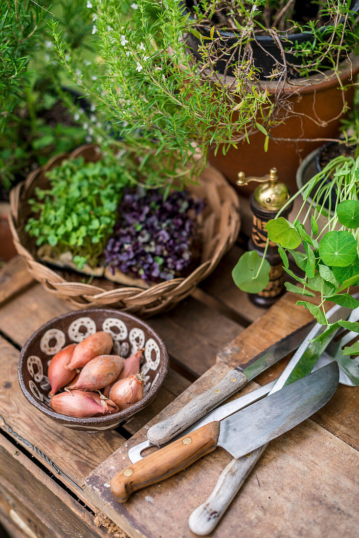 Herbs, onions and utensils on a wooden board in a garden kitchen