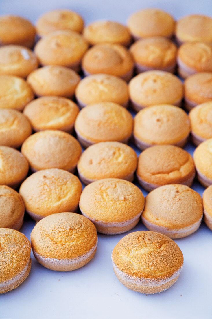 Limoncello cookies filled with grapefruit, lemon and orange mousse