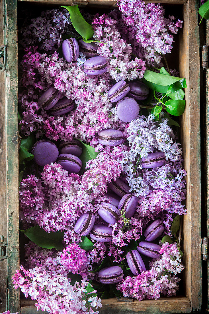 Purple macaroons and lilac in a wooden crate