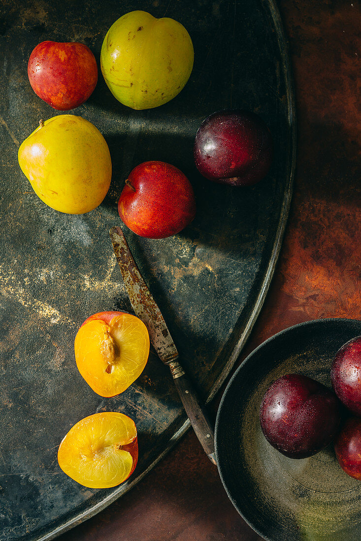 Colourful plums on a rusty metal platter with a rusty knife