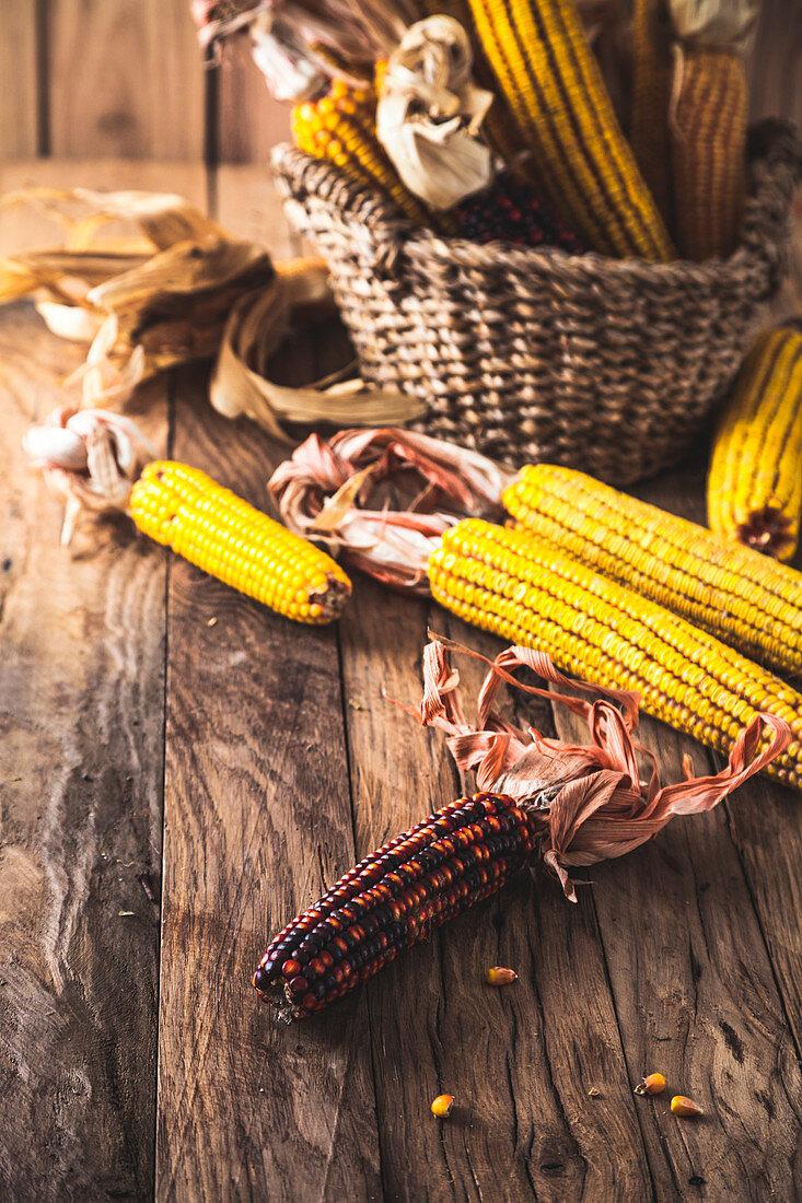 Autumn fruit with corn on wood