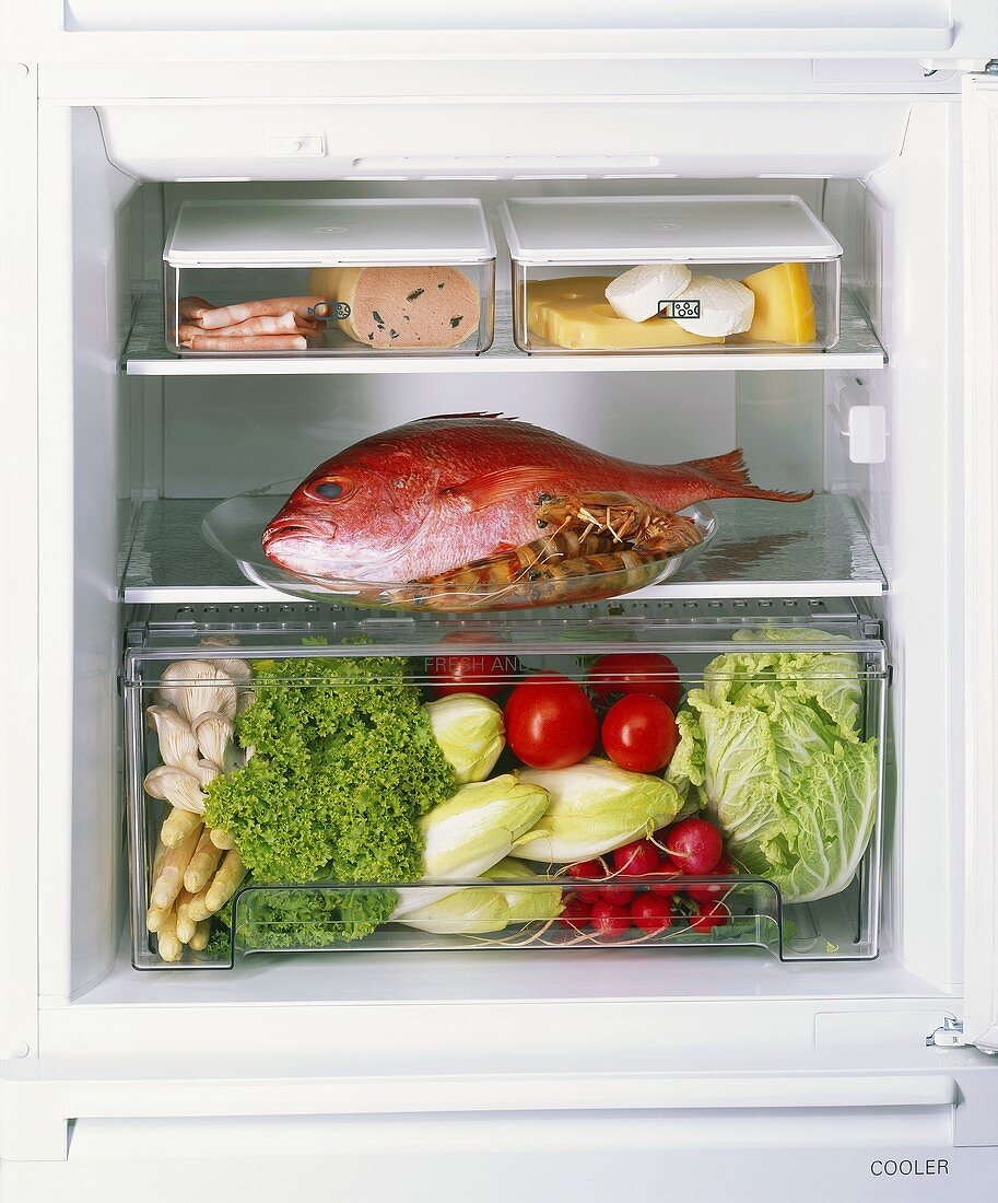 Looking in to a Refrigerator; Ingredients