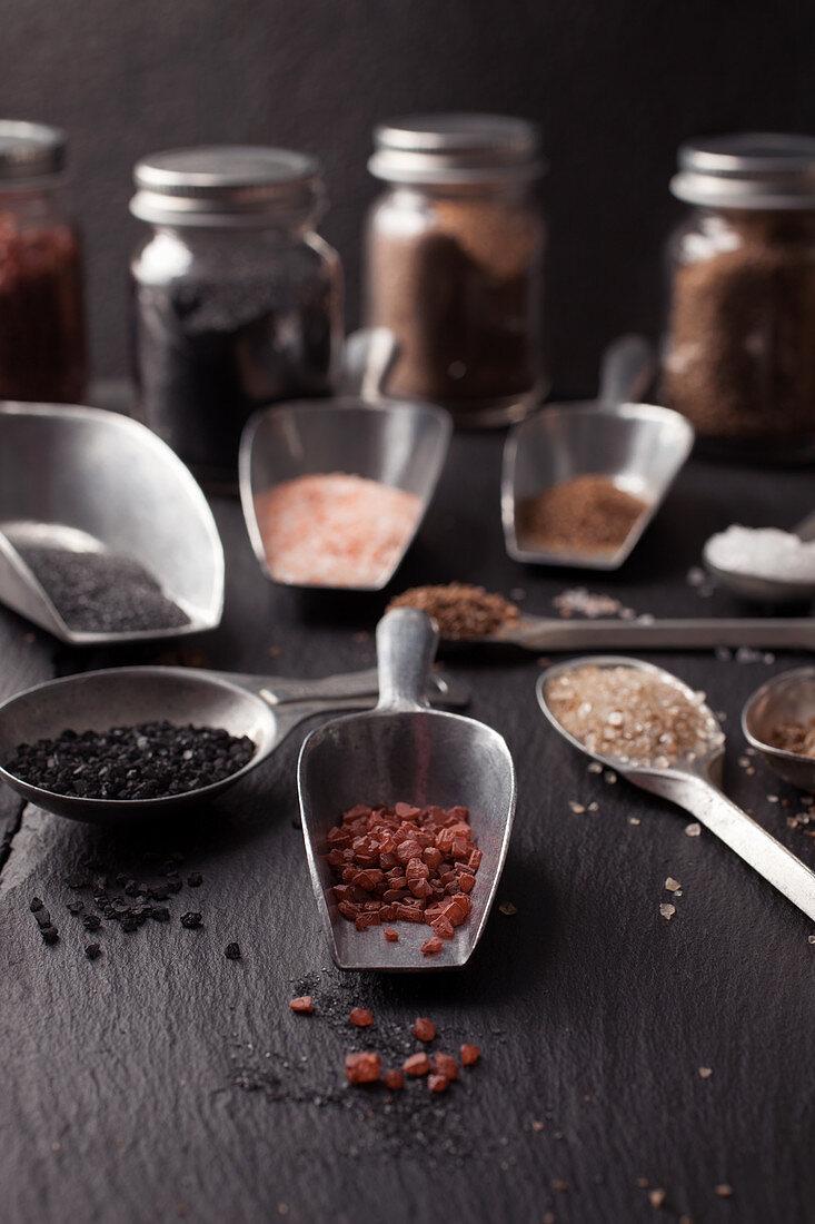 Various Types of Course Salt in Metal Scoops