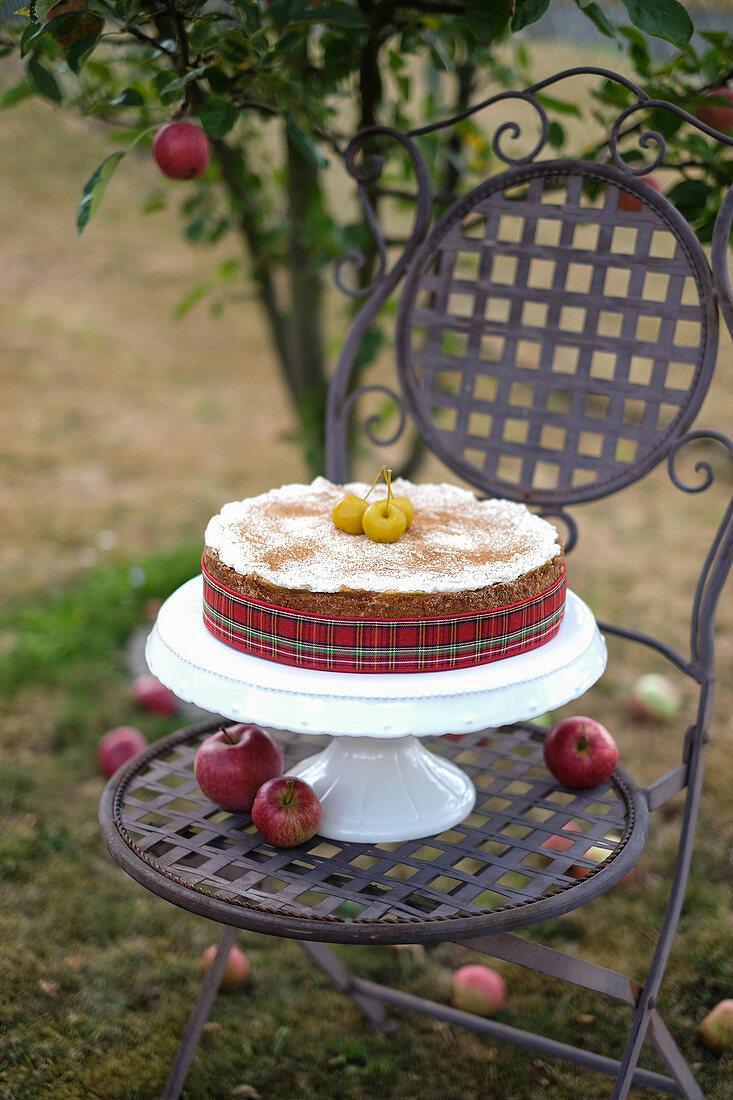 Autumnal apple cider cake on a garden chair