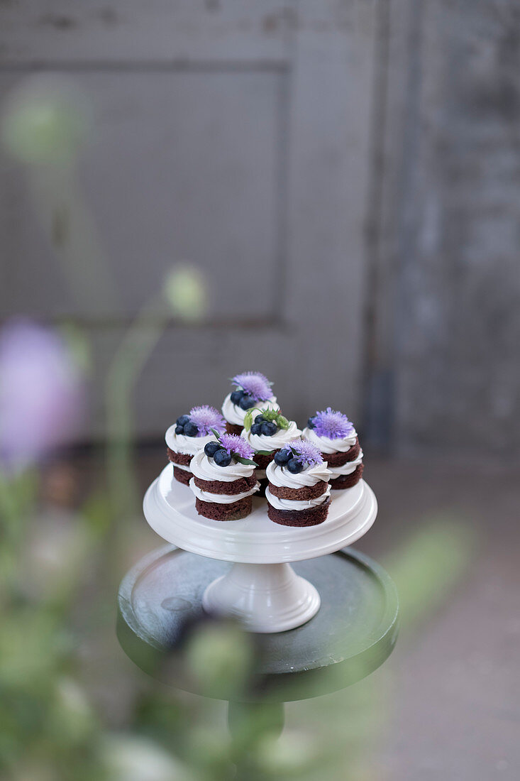Cupcakes from chocolatecake with purple flowers on a white standard