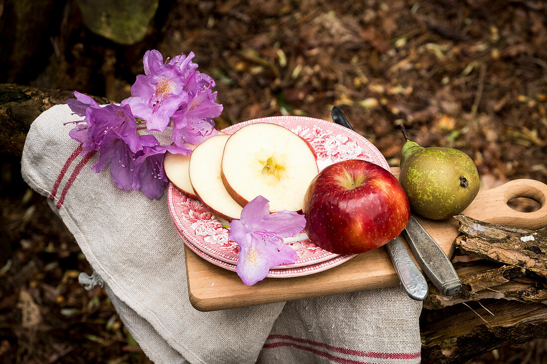 An apple and a pear and purple flowers on a brocante plate on a tree