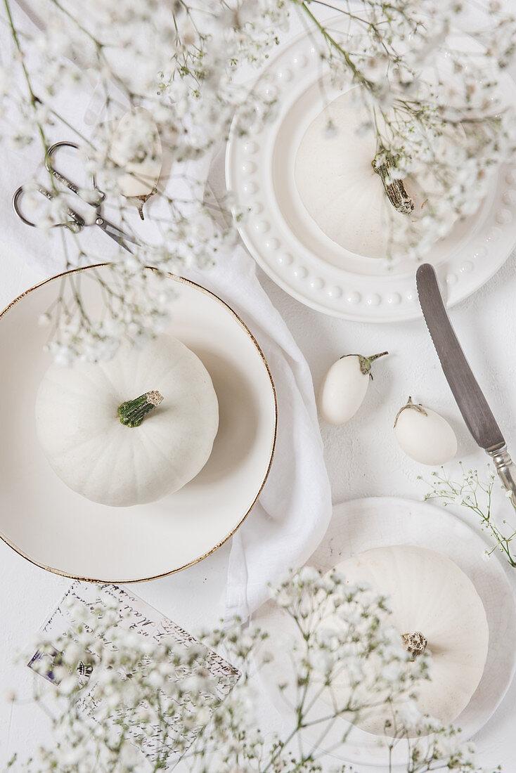 White pumpkins and white mini eggplants on white plates and white background