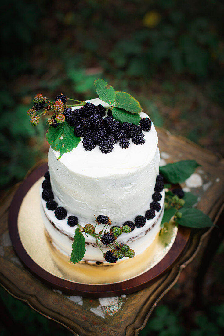 A two tier blackberry cake on an outdoor table