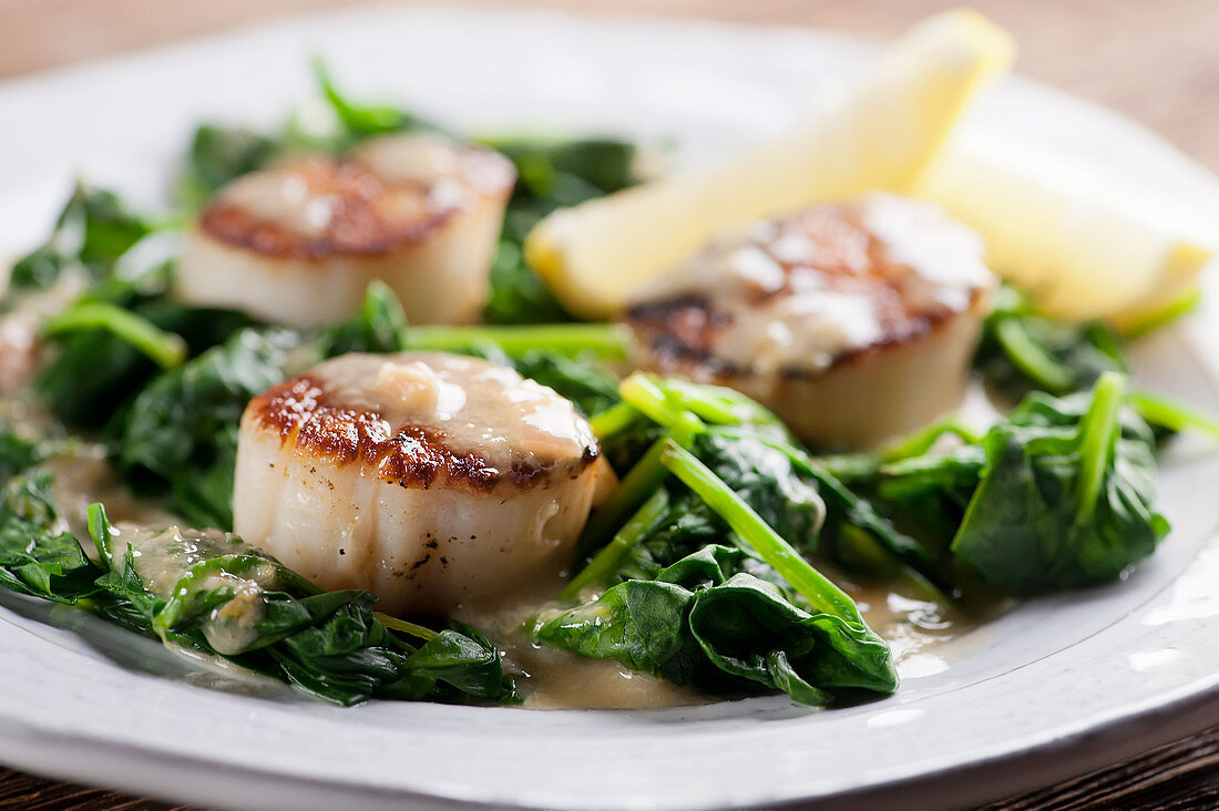 Sauteed scallops on spinach (close up)