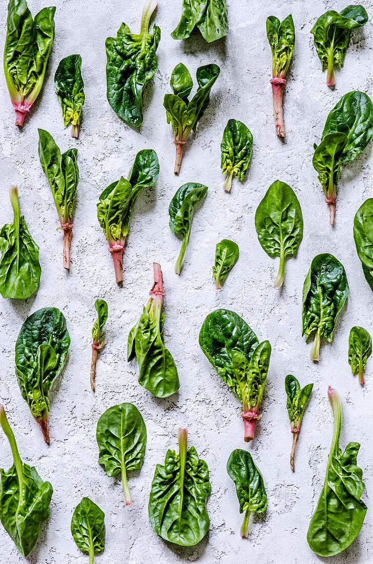 Young leaves of spinach with stalks laid out in the form of a pattern on a concrete background