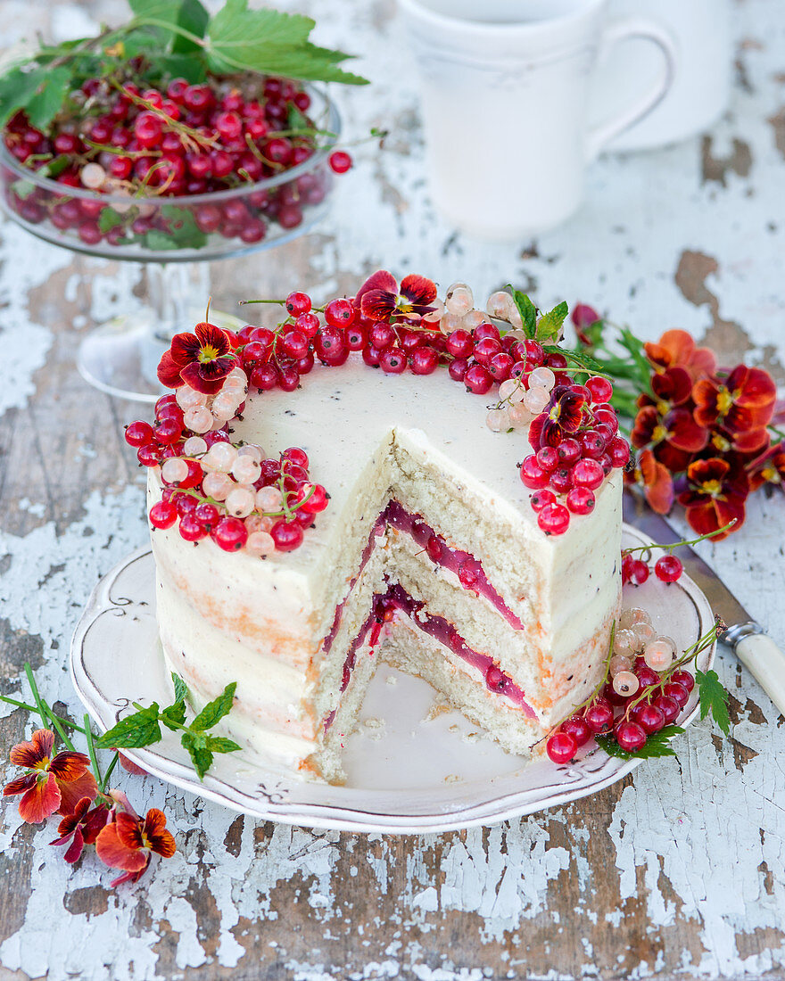 Cake with vanilla sponge, cream cheese and currant jelly