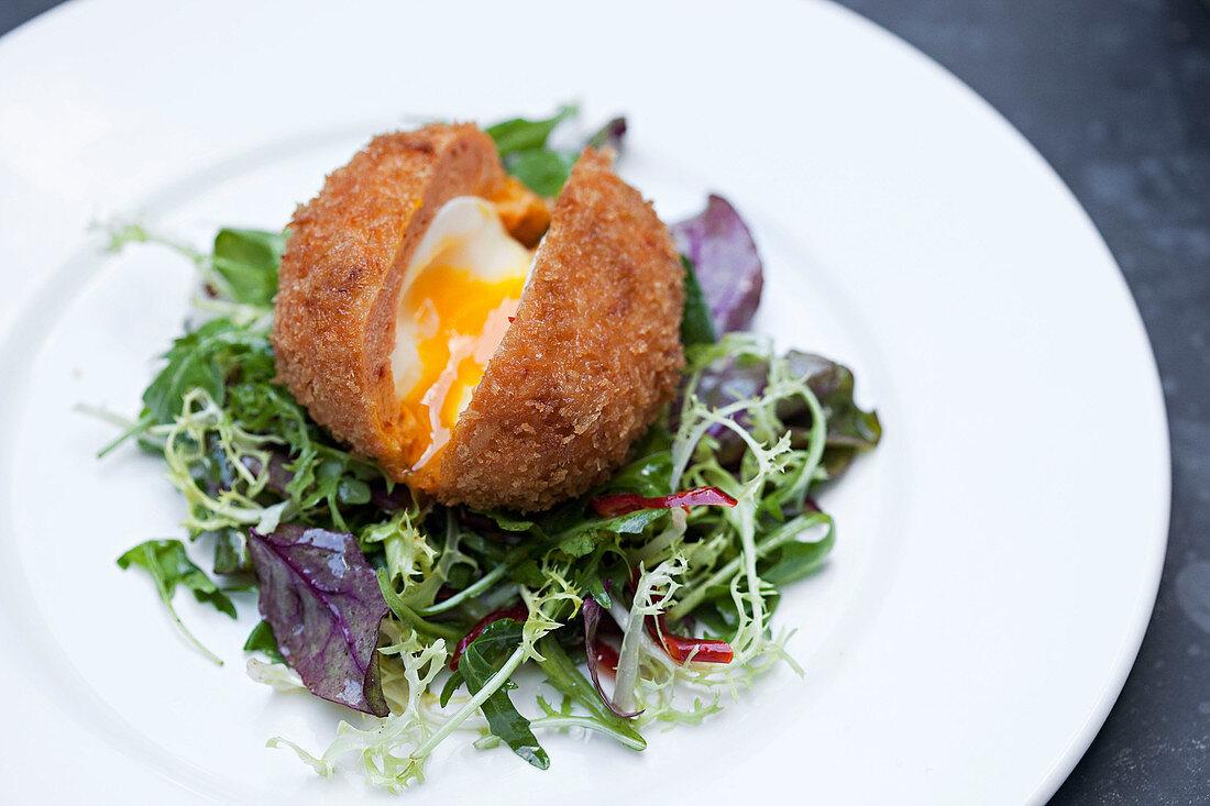 Scotch egg with golden runny yolk