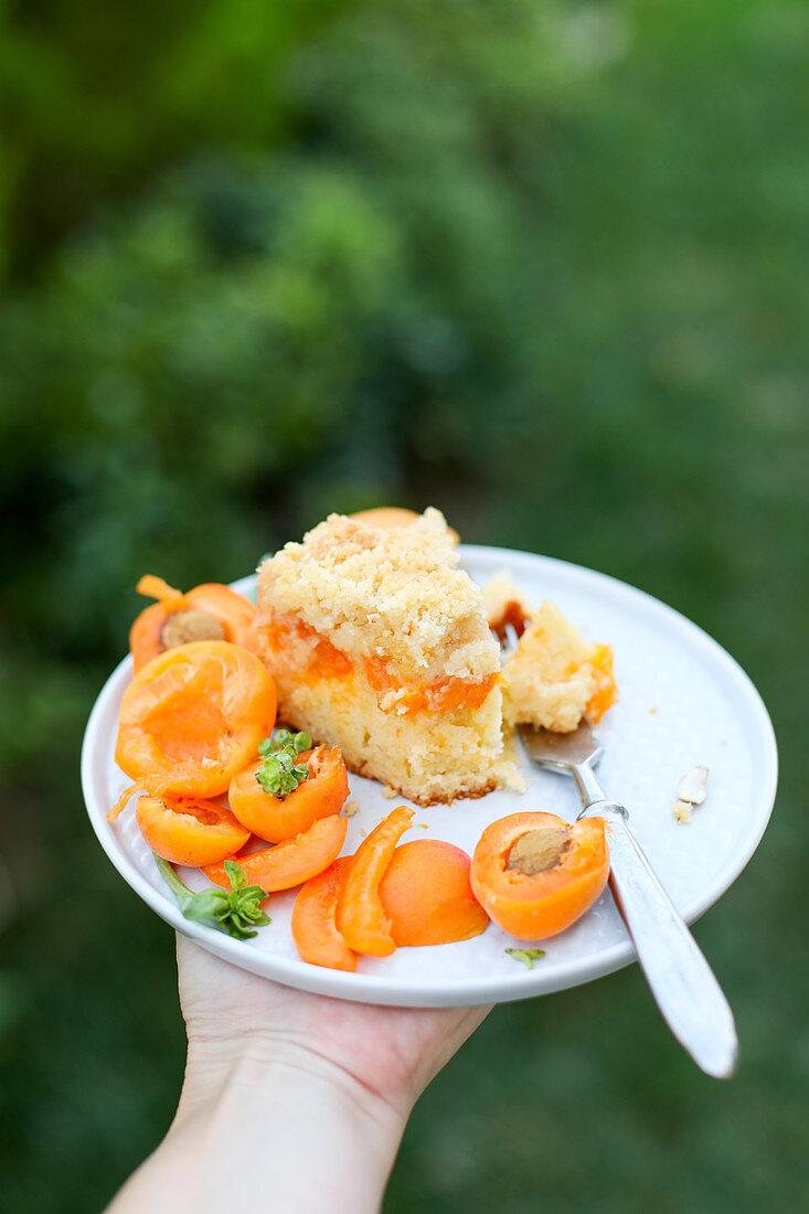 Hand hält Teller mit einem Stück Aprikosenkuchen