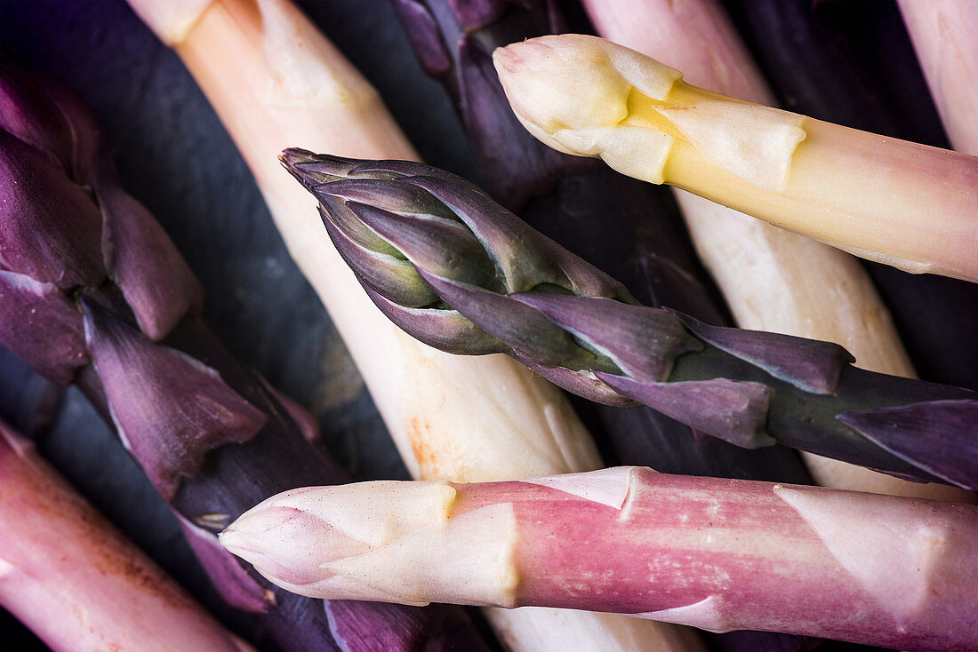 Various different coloured asparagus tips