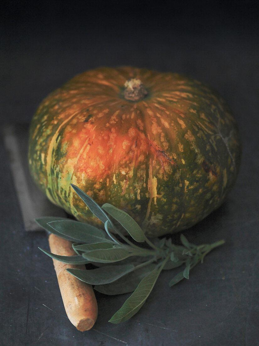 Kabocha Pumpkin and sprig of sage