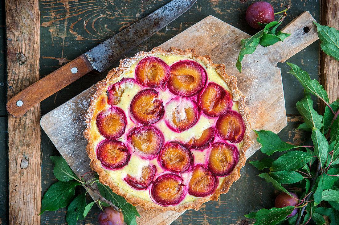 Plum pie with quark filling