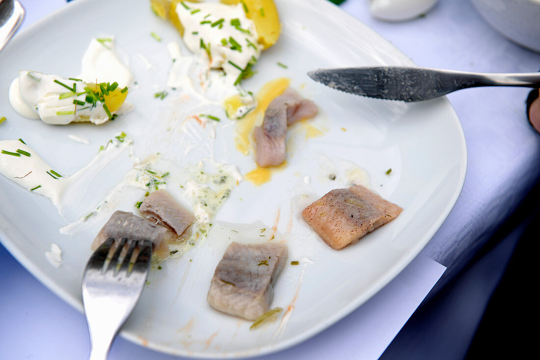 Leftover herring dishes on a plate