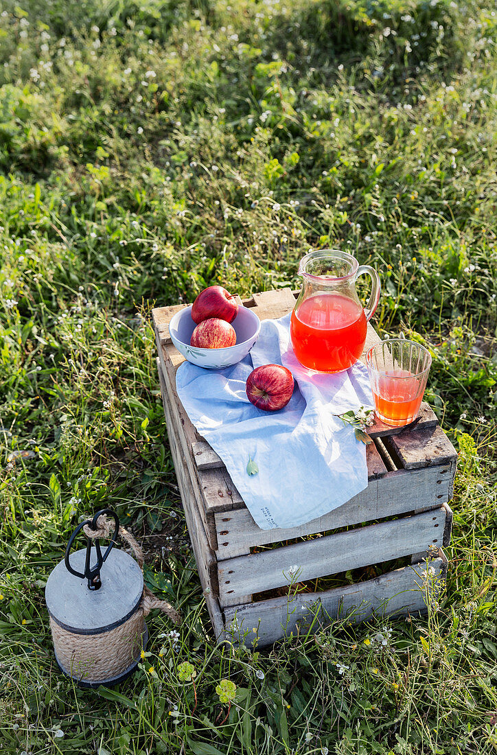 Wooden box with served napkin and glass of lemonade with apples in bowl on meadow