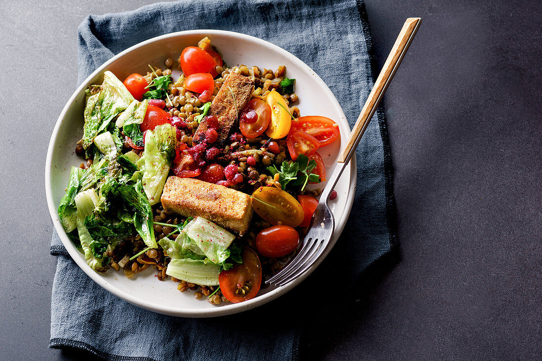 Vegetarian lentil salad with fried cheese, greens and fresh vegeables