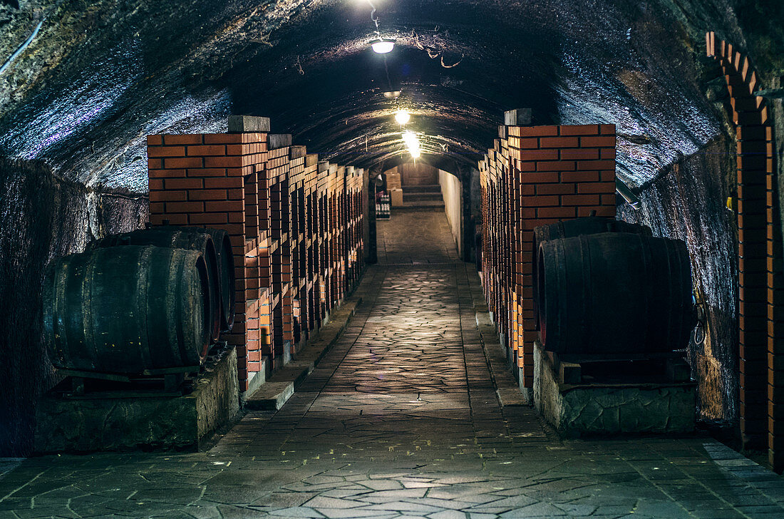 Wine cellar with wooden barrels and brick shelves for storing wine