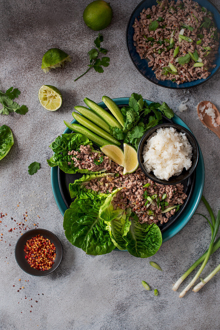 Vietnamese minced pork salad with chilli, lime and coriander