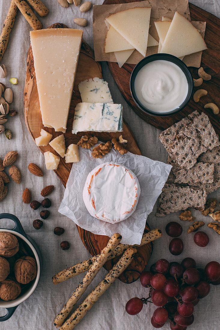 Käseplatte mit Nüssen, Trauben und Brot