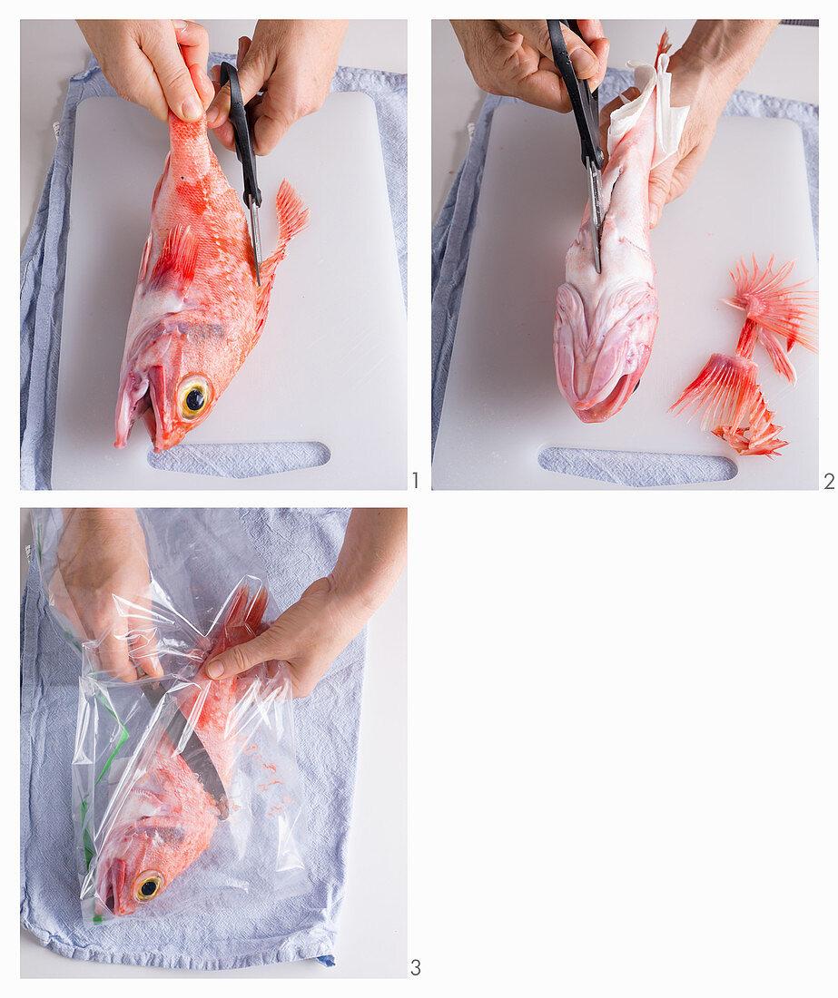 How to prepare a dragon's head fish