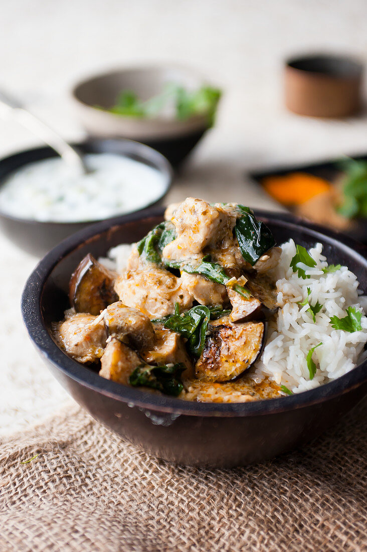 Chicken and aubergine curry with rice (India)