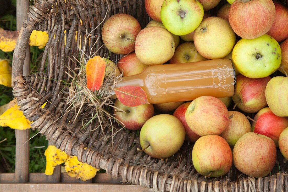 Homemade apple juice and fresh apples in a basket