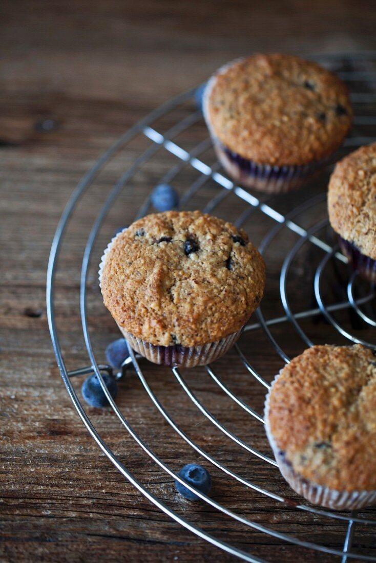 Freshly baked Blueberry hazelnut muffins on a cooling rack