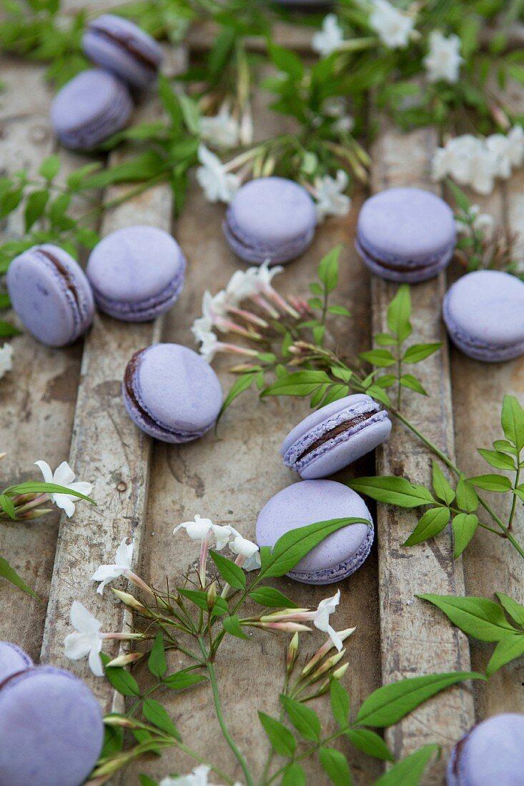 Lavendel-Macarons mit Schokoladencremefüllung