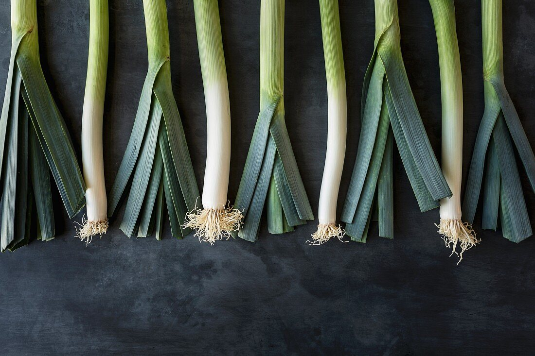 Row of leeks on a grey stone surface