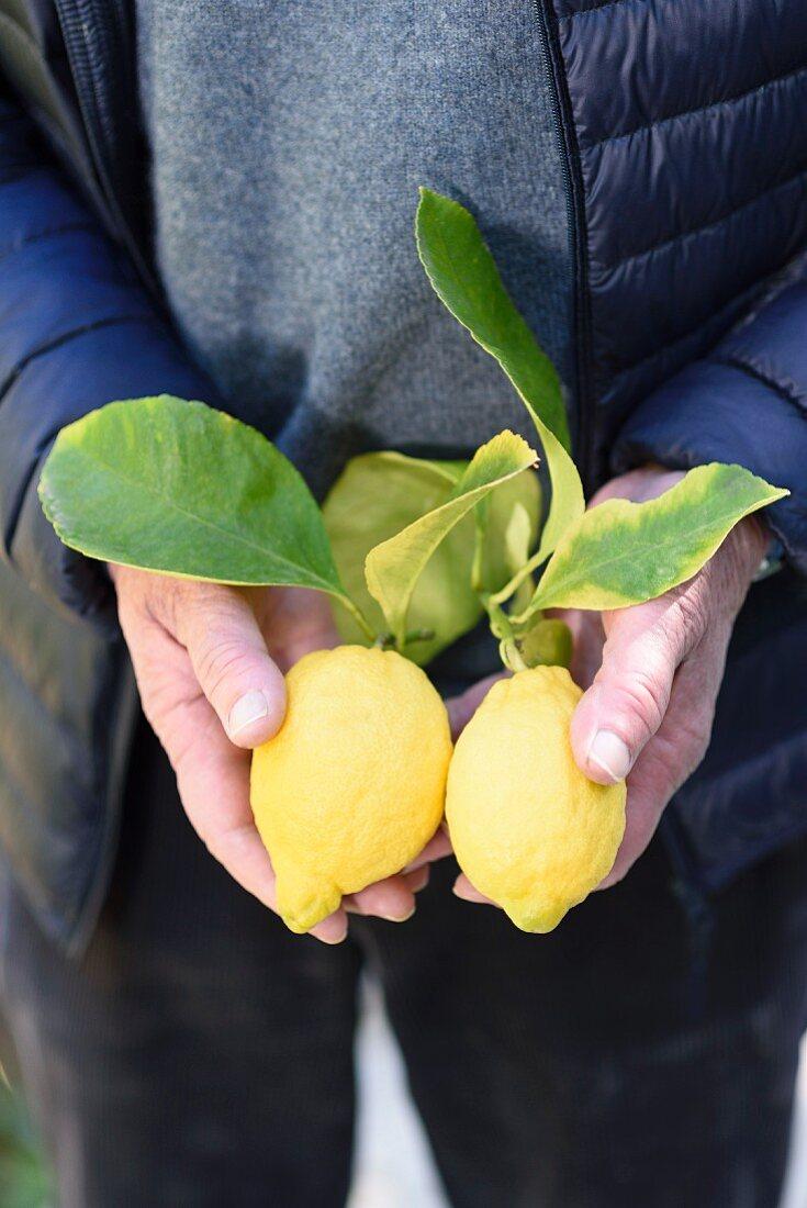Mann mit zwei Zitronen in der Hand