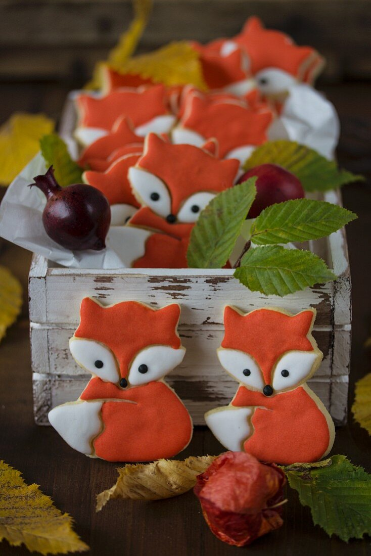 Fox biscuits with royal Icing