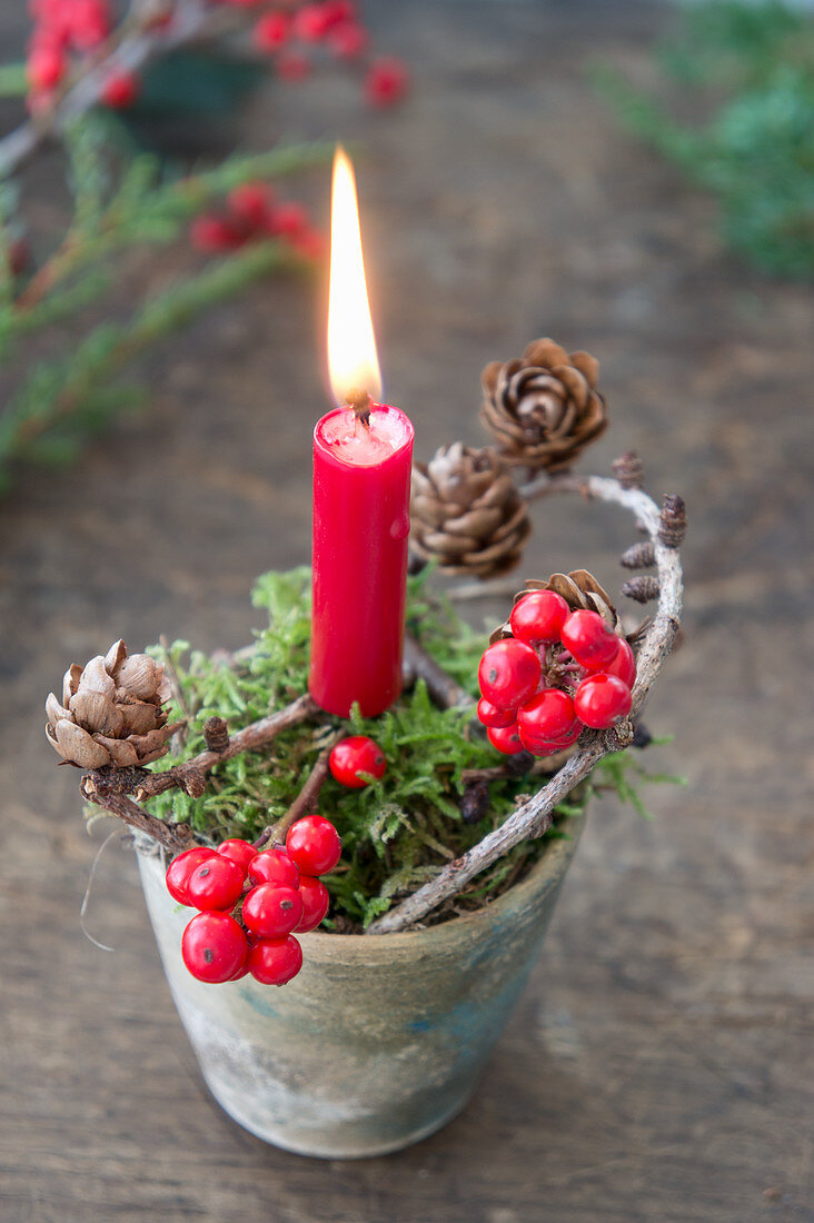 Christmas arrangement of moss, candle, holly and larch cones in clay pot