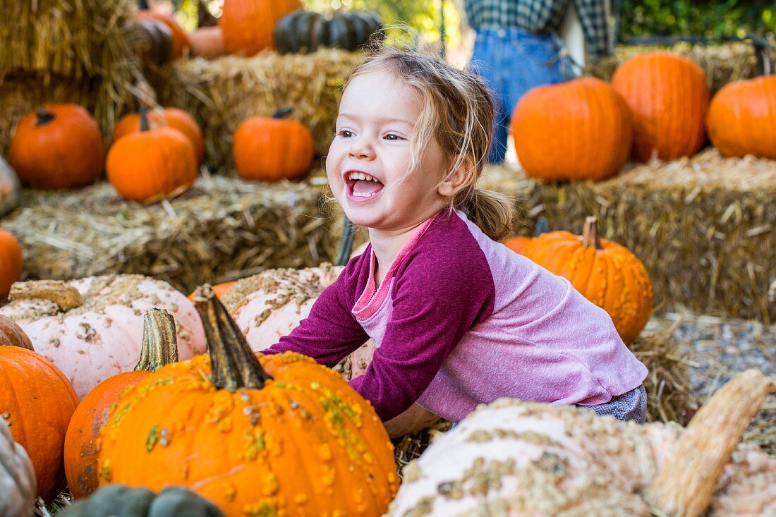 A young girl playing in a pumpkin patch and laughing