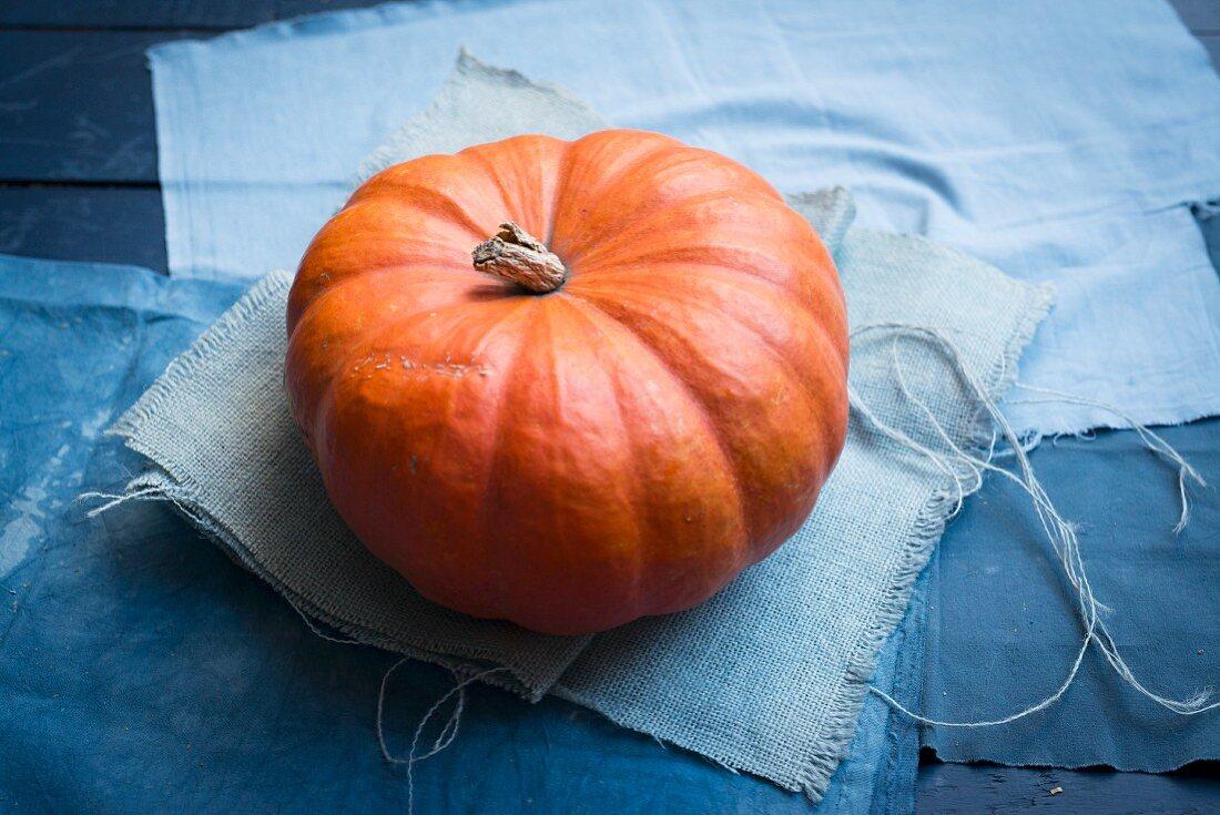 A red Cucurbita maxima pumpkin