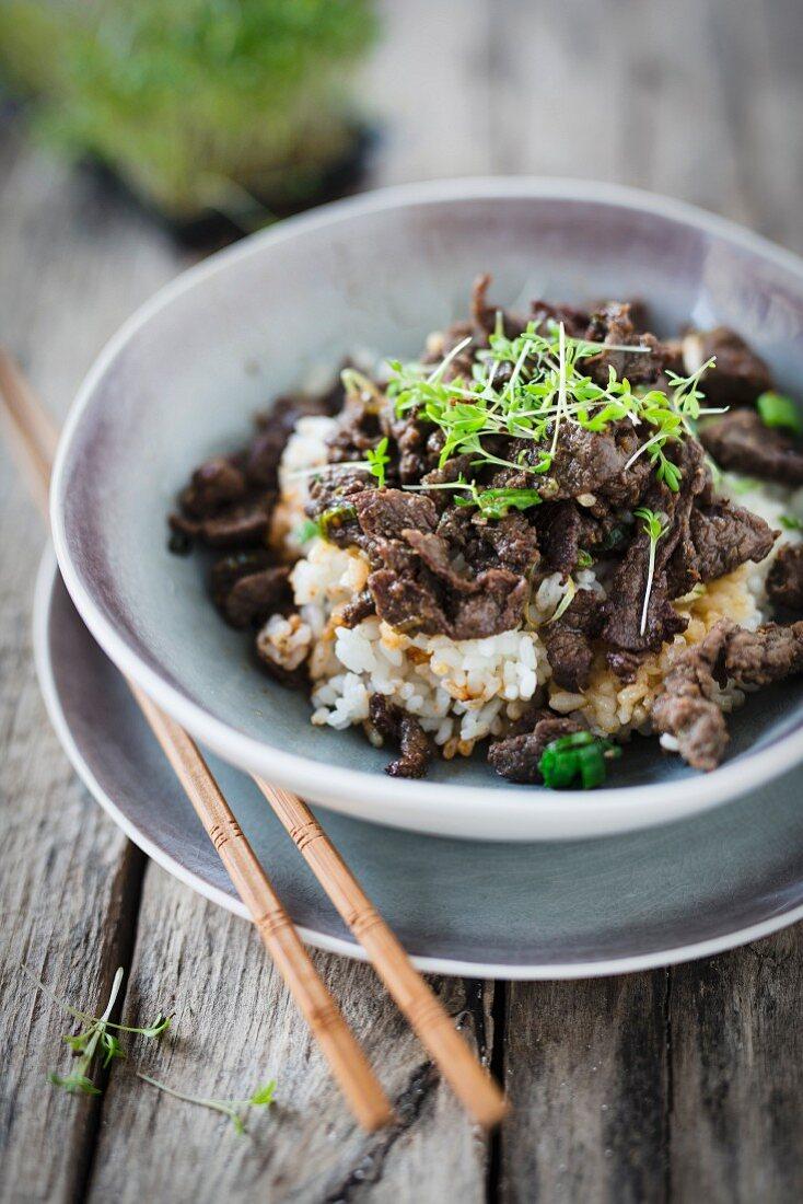 Bulgogi with rice (Korea)