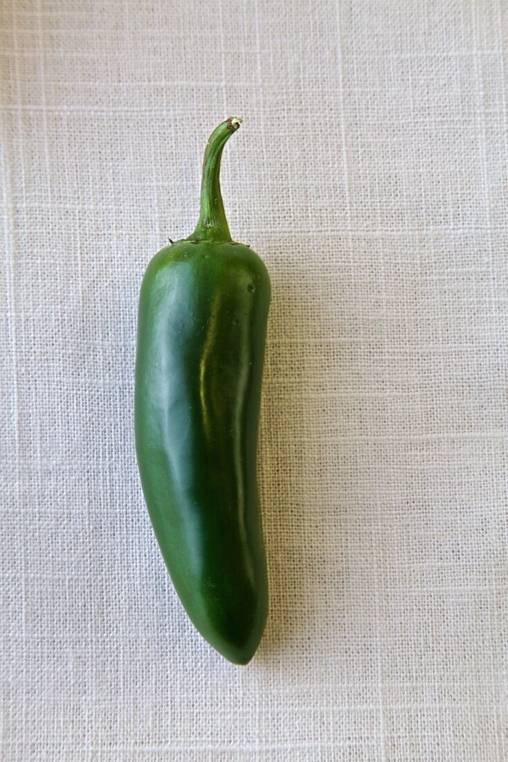 A green chilli on a white background (top view)