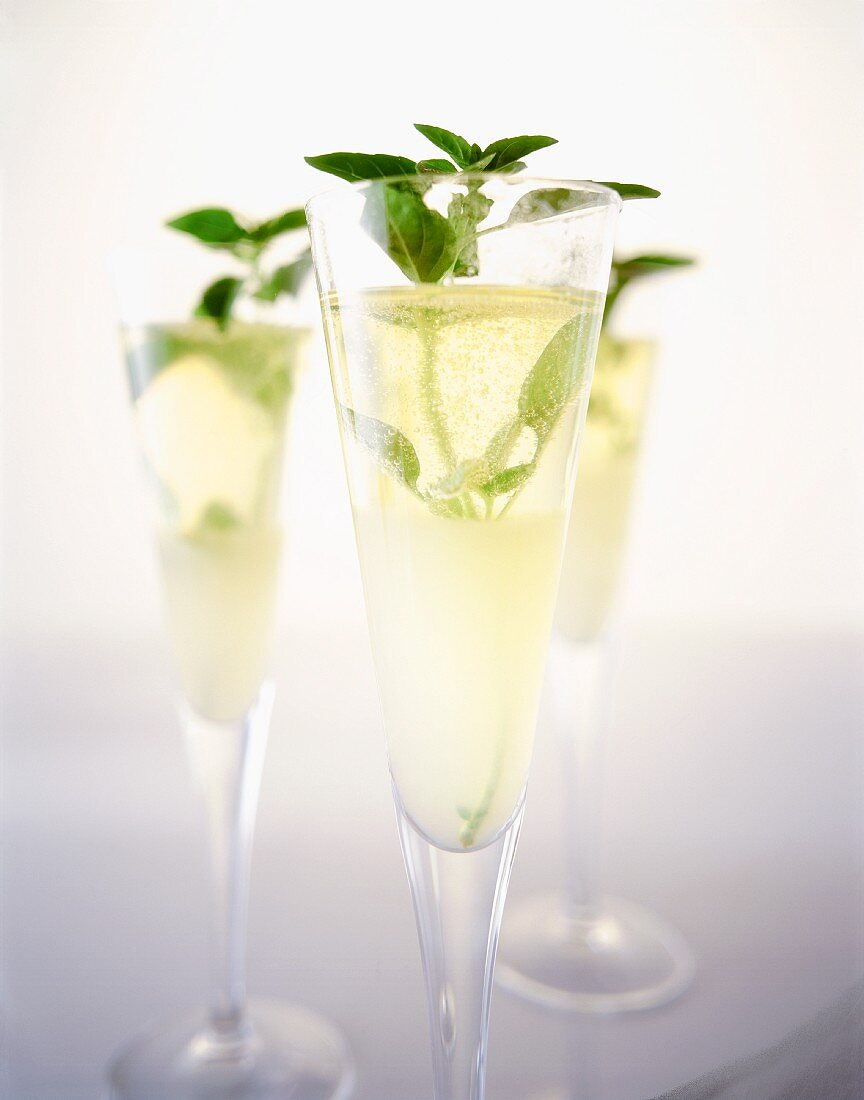 Three glasses of champagne with fresh mint