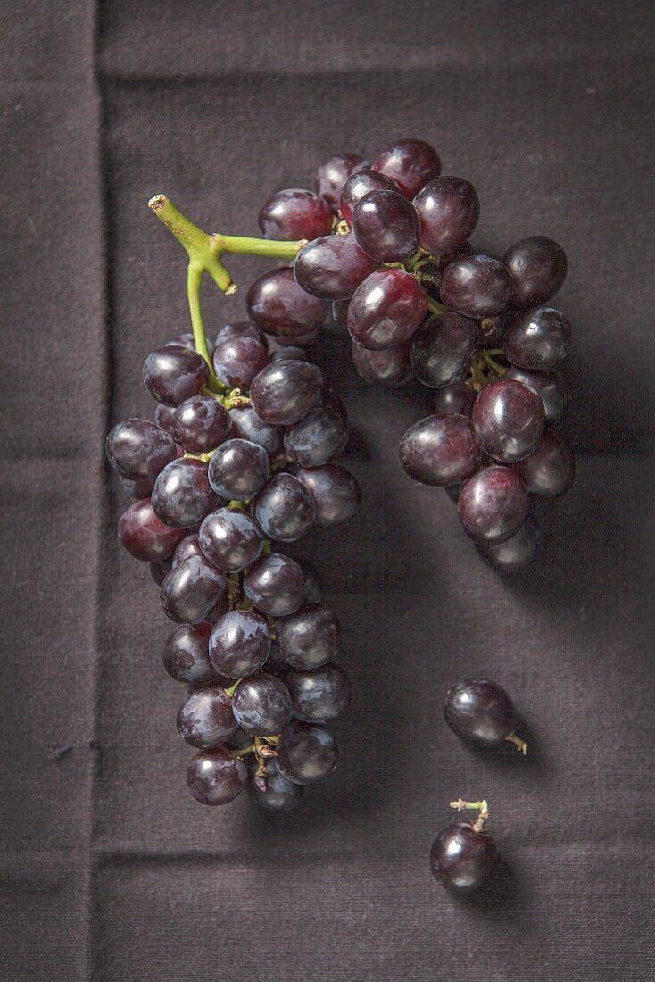 Bunch on black grapes on black cloth