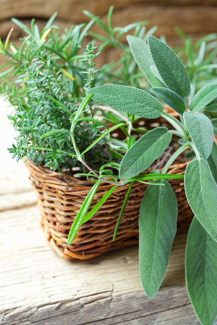 Fresh sage, thyme and rosemary in a basket