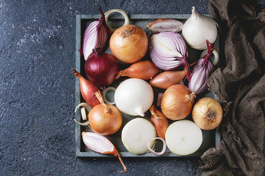 Stillleben mit verschiedenen Zwiebelsorten (Aufsicht)