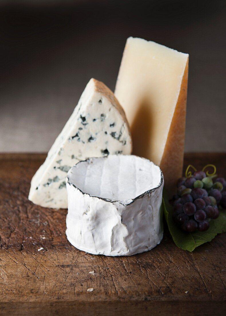 Verschiedene Käsesorten und Trauben auf Holzbrett