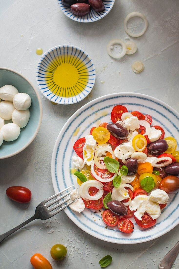 Mozzarella and tomato salad with olives, onion, basil and olive oil
