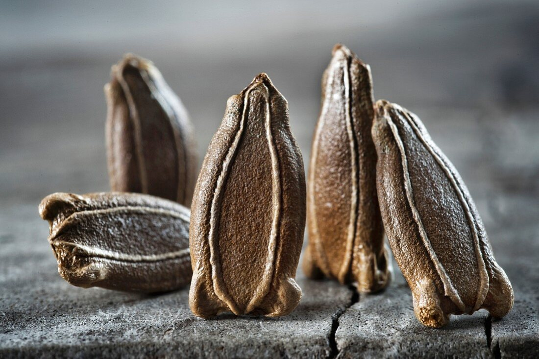 Gourd seeds (close-up)